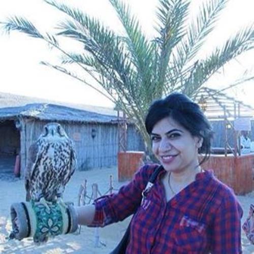 Sarah Habib 3's avatar