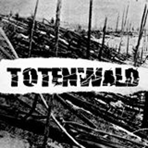 TOTENWALD's avatar