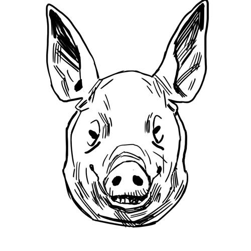 Hogtown Talks Podcast's avatar