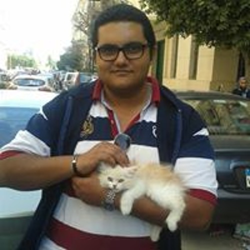 Mostafa Akkad 1's avatar