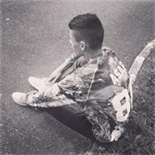 Lucas Danet's avatar