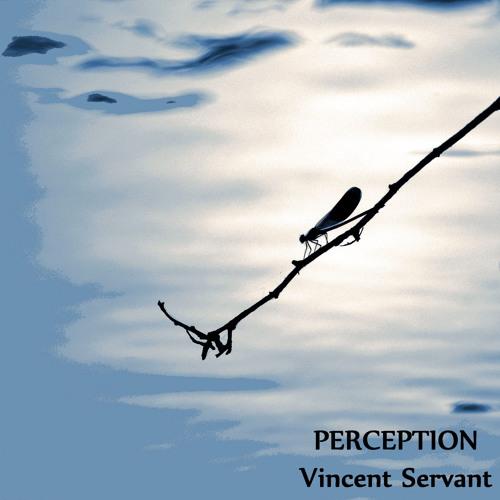 Vincent Servant's avatar