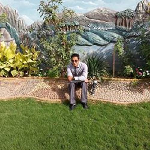 Sameh Fouad 11's avatar