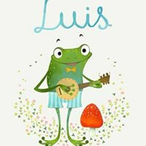 Luis Vera Prendes's avatar