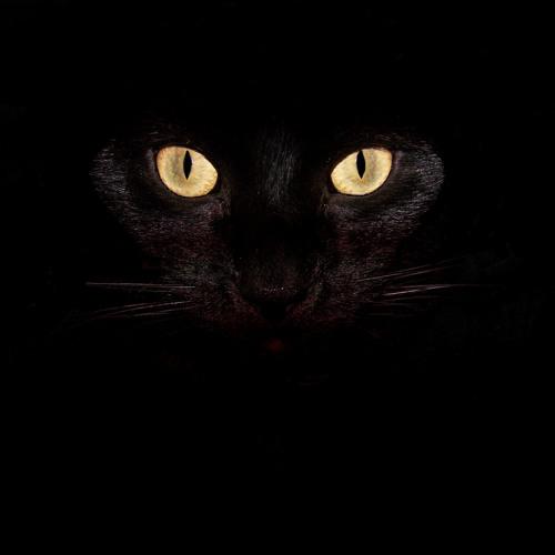 Zrydrine's avatar