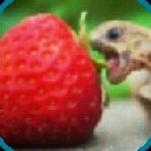 xgreenhawkx's avatar