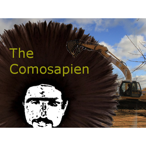 The Comosapien's avatar