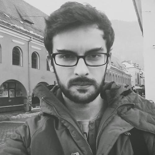 Florin Nitulescu's avatar