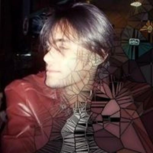 Pedro Barcelos 8's avatar