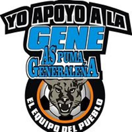Gabriel Venegas Loaiza's avatar