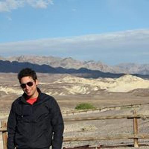 Daniel Heekeren's avatar