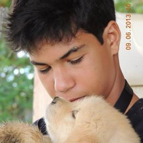 Luan Roumillac de Melo's avatar