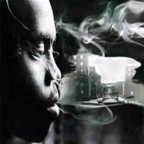 street dreamers's avatar