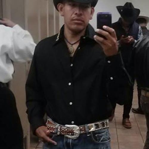 enivalmartinez's avatar