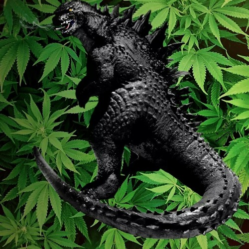 weed-zilla's avatar