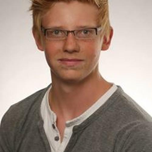 Raphael Rodehutskors's avatar