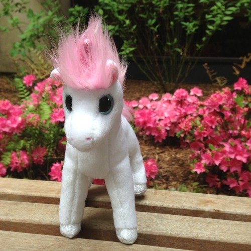 Tom, The Unicorn's avatar