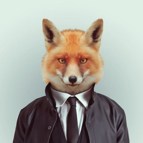 regard°°renard's avatar