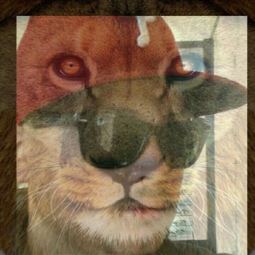 omarflow2's avatar