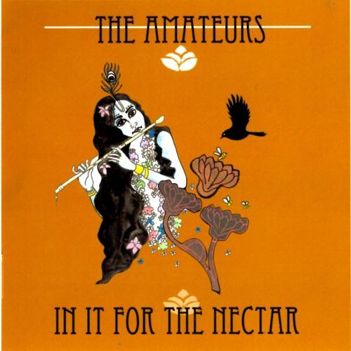 The Amateurs's avatar