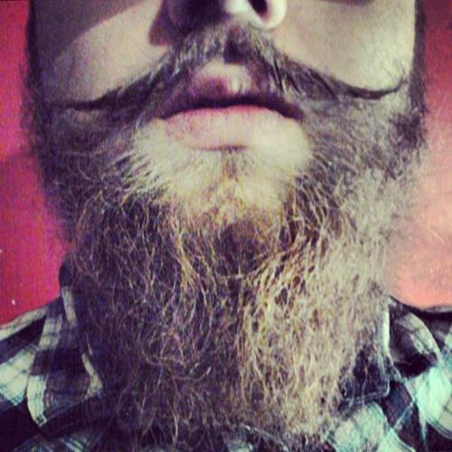 Bence Nimmersatt's avatar