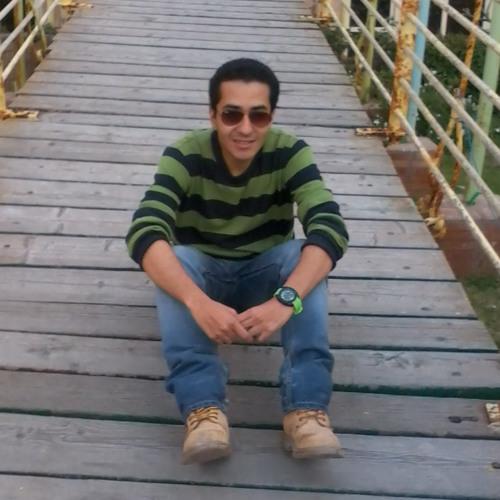 ll zizo ll's avatar