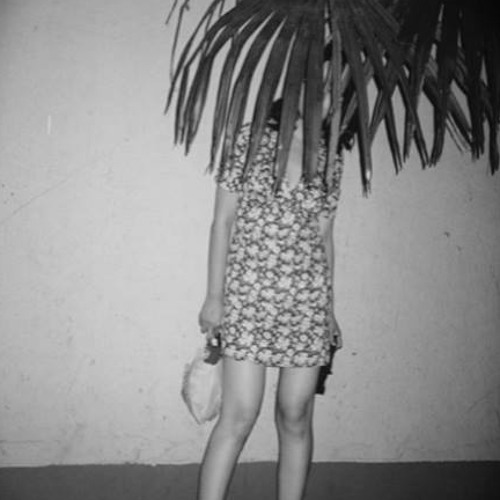 Charlotte Lattin's avatar