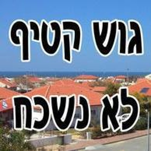 Shmuel Duek's avatar