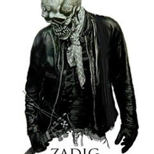 Zadig Ou la Destinée's avatar