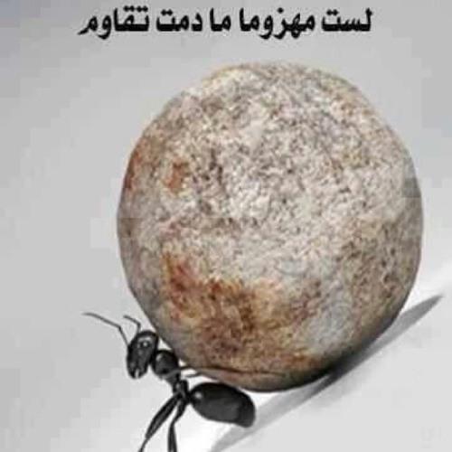 mohamed hamdy sarhan's avatar