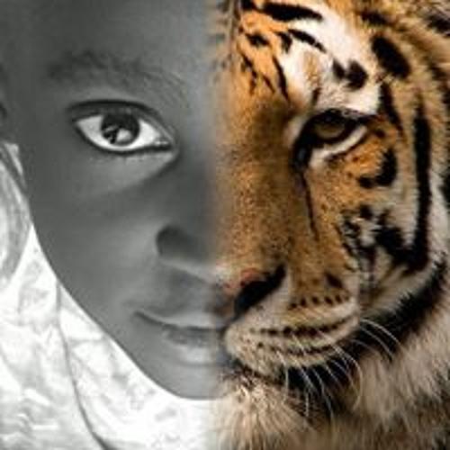Wylmer Kiamy Dos Santos's avatar