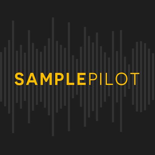 Samplepilot's avatar