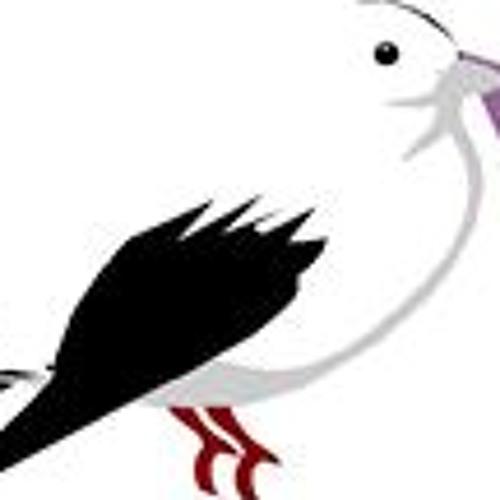 Hải 5's avatar