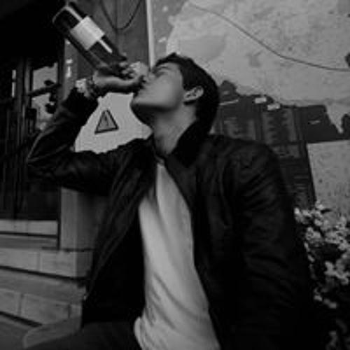 Maxim Horion's avatar