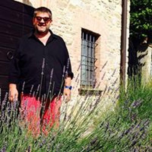 Pietro Vigani's avatar