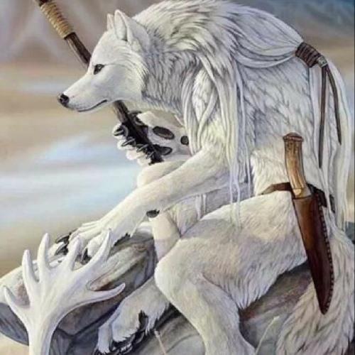 whitewolfrider's avatar