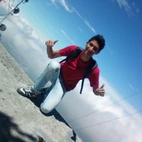 Diego L Garay.'s avatar