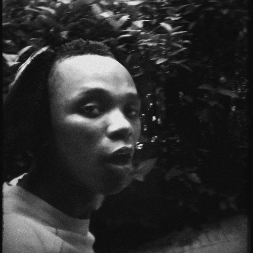 q2darious's avatar