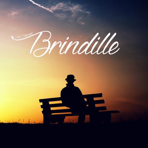 Brindille (He)'s avatar