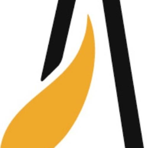 Ansgarskolen's avatar