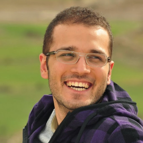 Farshad Houtaham's avatar