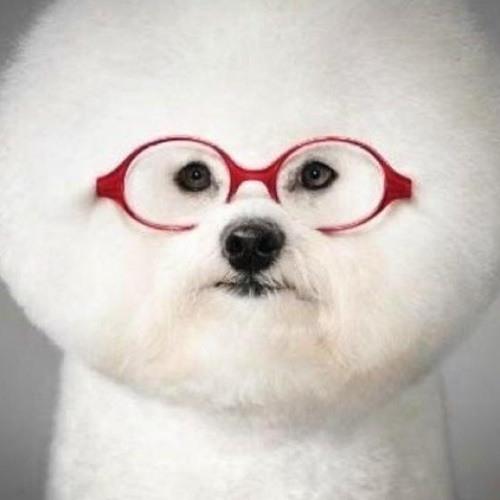 Bec Morgan's avatar