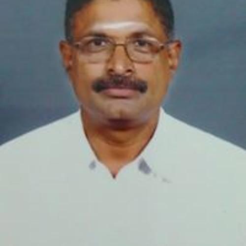 Ramasamy Palanigounder's avatar