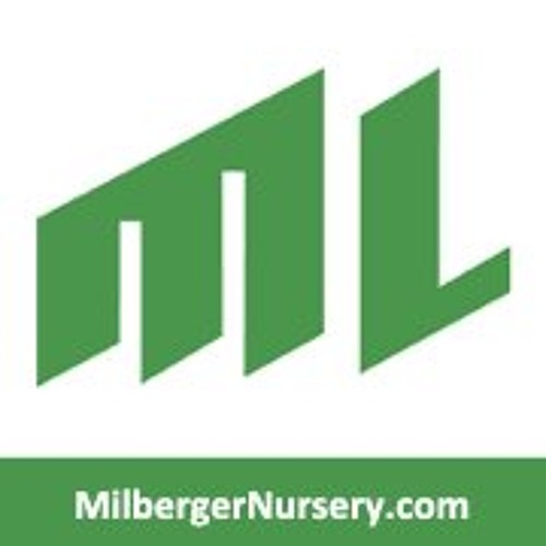 Milberger's Gardening STX's avatar