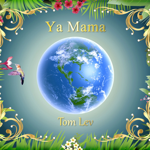 Tom Lev's avatar