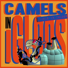 Camels in Igloos