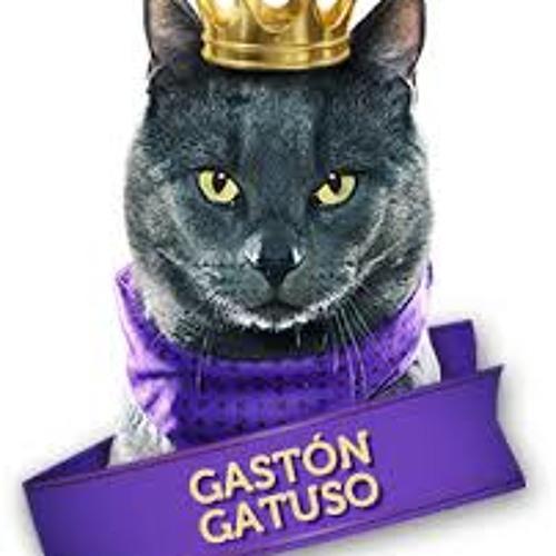 Gaston Gatuso's avatar
