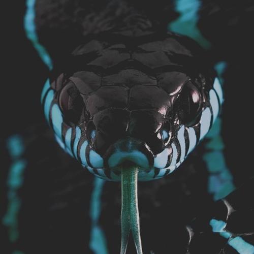 Mrselfd Nin's avatar