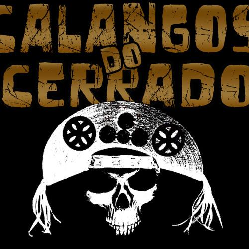 CalangosDoCerrado's avatar