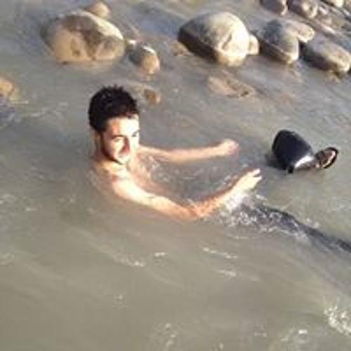 Hamza Mushtaq Kashmiri's avatar